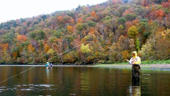 Lake taneycomo trout picture of rogers arkansas for Lake taneycomo trout fishing