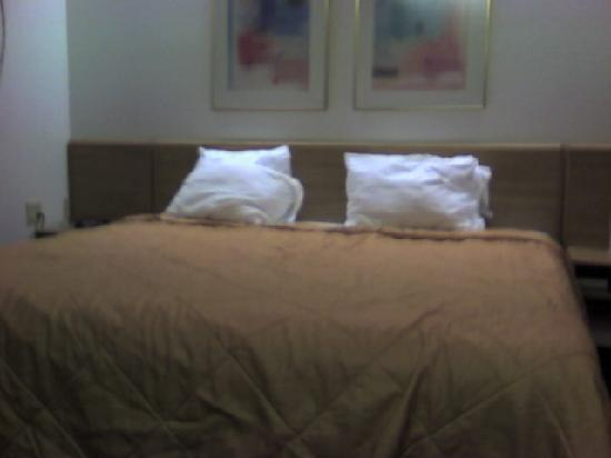 Sleep Inn , Inn &amp; Suites: The bed.