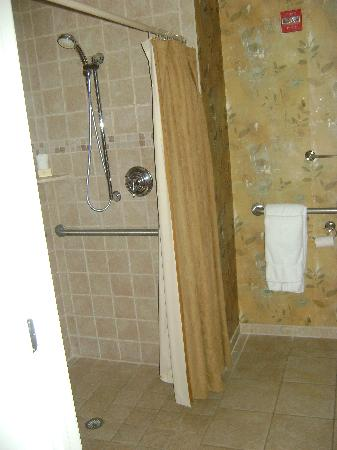 Vernon, NJ: Luxury Guestroom...with no tub?
