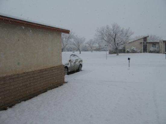 Carlsbad, NM: View from our front door looking toward the driveway.