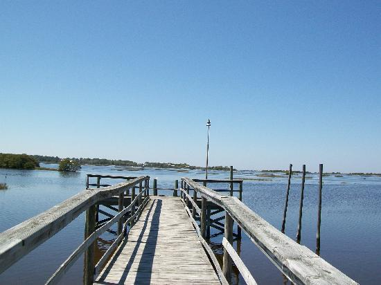 Fishing pier looking out at the bay flats picture of for Cedar key fl fishing