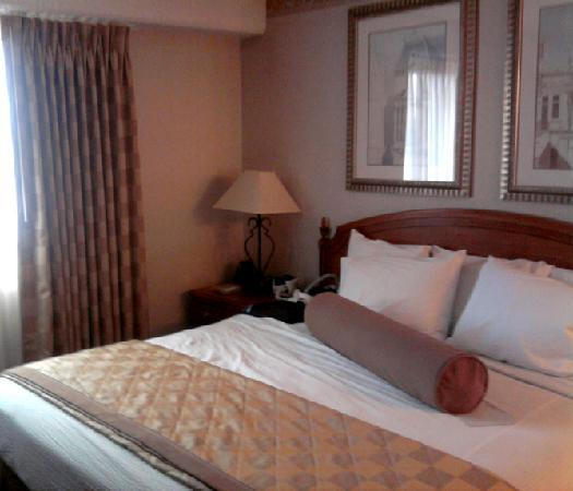 Embassy Suites Hotel Chicago - Schaumburg / Woodfield: Hotel Room Bed
