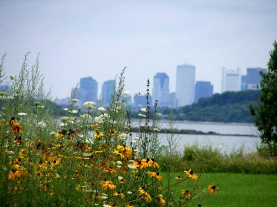 Quincy, : Boston Skyline from Nut Island, Quincy