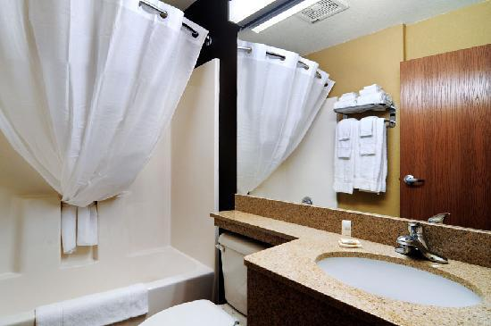 Microtel Inn & Suites by Wyndham Canton: Inroom Bath