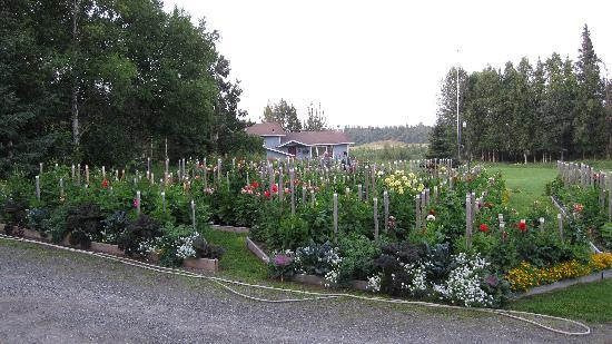 Moose Gardens Bed and Breakfast: Partial view of front gardens