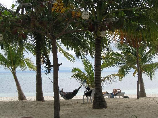 Malapascua Exotic Island Dive & Beach Resort: covers it best