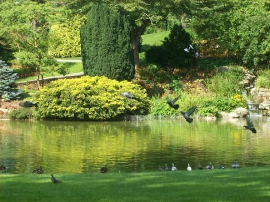 Angers, France: Jardin des plantes