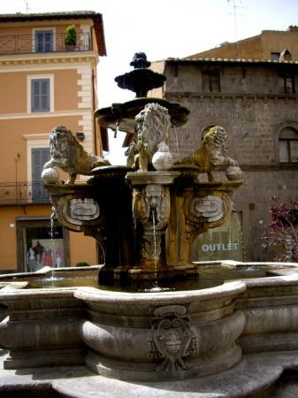 Viterbo, Italia: Lion fountain meet up spot!