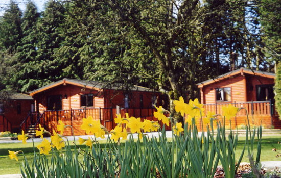 Dalshian Chalets