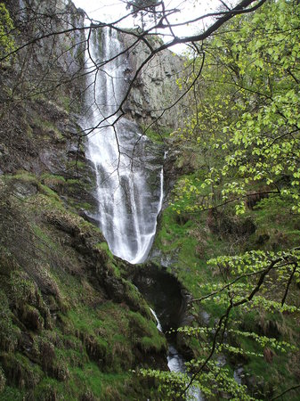 Llanfyllin, UK: Close by Waterfall