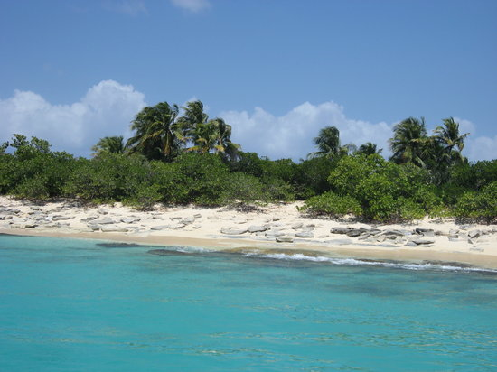 Fajardo, Puerto Rico: Beautiful coast of Icacos