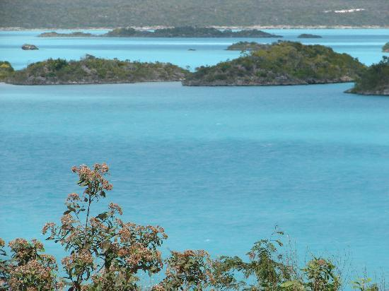 Harbour Club Villas & Marina: Did we say TURQUOISE?