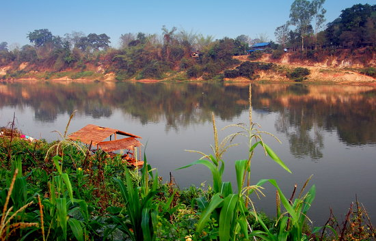 Rivertime Resort and Ecolodge: A scenic view from our bungalow