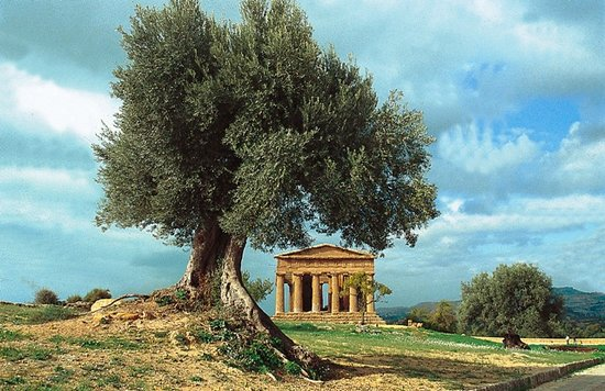 Agrigento, : Agrigento