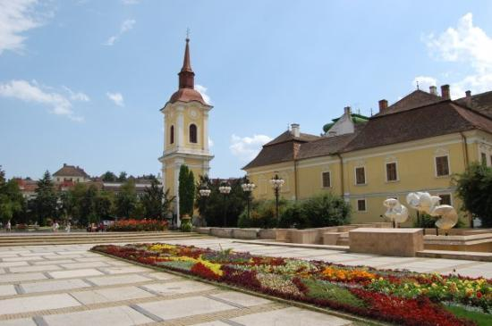 Bed and breakfasts in Tirgu Mures