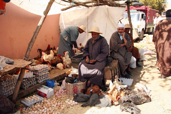 Amizmiz rural market - poultry