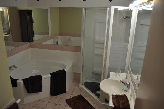 Prince Motor Lodge: Nice bath with tub and good shower.