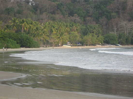 Playa Samara, Costa Rica : playa espaciosa 