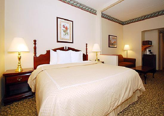 Comfort Suites University: King Bed Mini-Suite