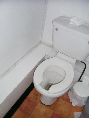 St. Ives Backpackers: toilet