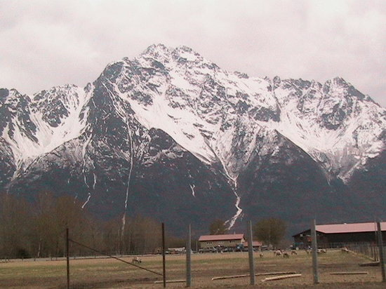 Palmer, AK: View from Reindeer Farm