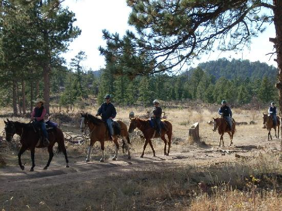 ‪‪Sundance Trail Guest & Dude Ranch‬: Trail Ride‬