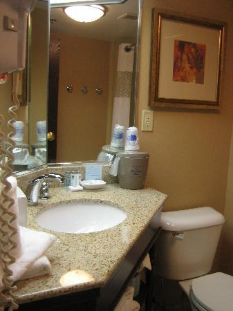 Hampton Inn Buffalo Airport: bathroom vanity