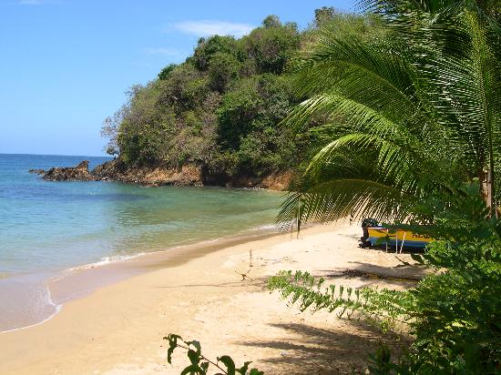 Tobago: View from the veranda