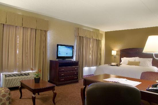 Hampton Inn Stes Madison West: King Suite