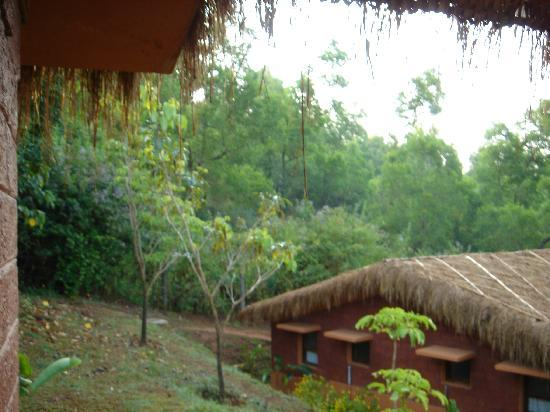 View From Cottage Picture Of Heritage Resort Coorg Madikeri Tripadvisor