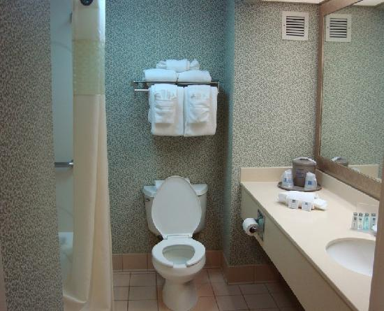 Hampton Inn Secaucus-Meadowlands: Clean bathroom