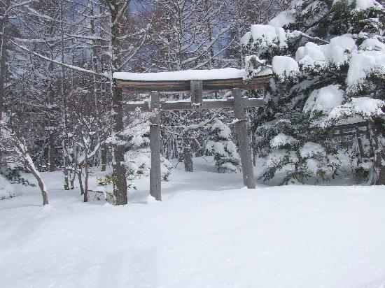 Yamanouchi-machi, Japon : skiing in Japan is unique