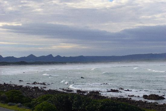 Franskraal B&B: View from the breakfast table