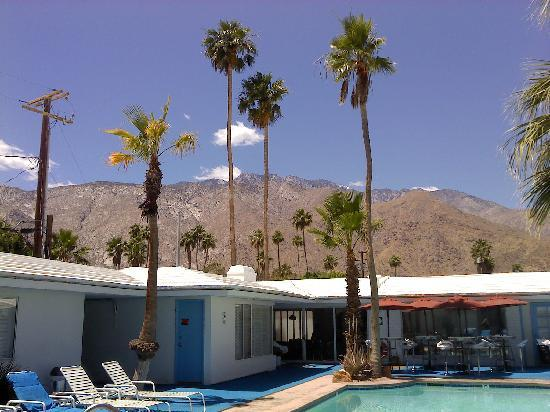 Palm Springs Rendezvous照片