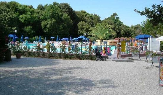 Casale Marittimo, Italy: Panoramica - Camping Valle Gaia
