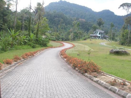 Borneo Highlands Resort: beautiful grounds