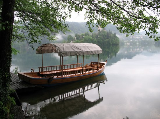 This is the proof that ANYBODY can take extraordinary pictures walking around Lake Bled. Pletna