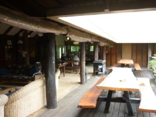 Treehouse Hostel: The Backpacker