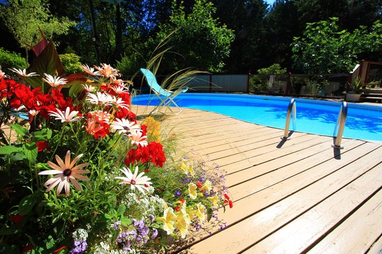 Rosemarie's Guest House B&B: Relax at the pool