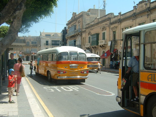 Qawra, Malta: get on the bus!!
