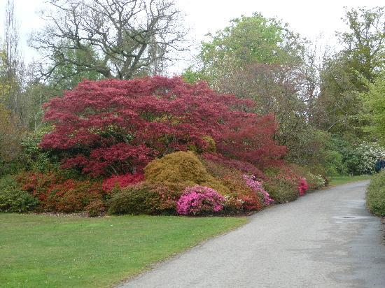 New Forest National Park, UK: EXBURY GARDENS 30 MINS FROM HOLIDAY INN SOUTHAMPTON