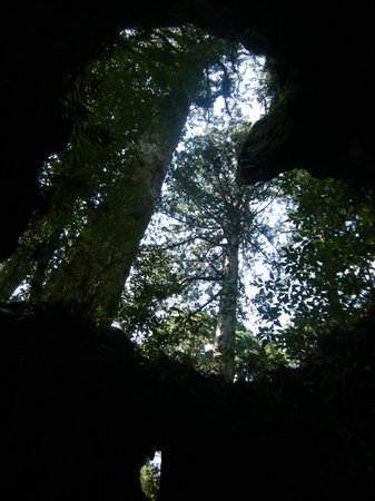 Yakushima pensjonaty