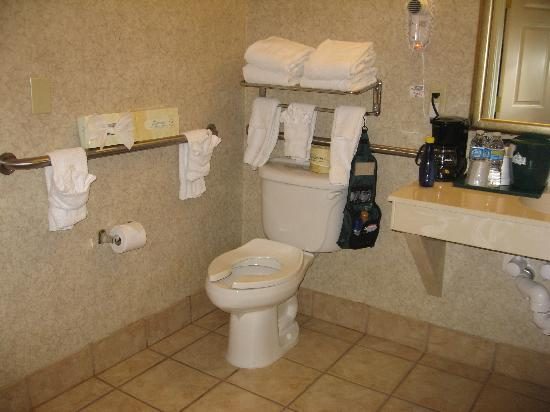 Country Inn & Suites By Carlson, Round Rock: Bathroom