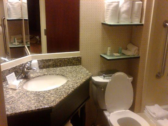 Comfort Inn & Suites Airport : Bathroom