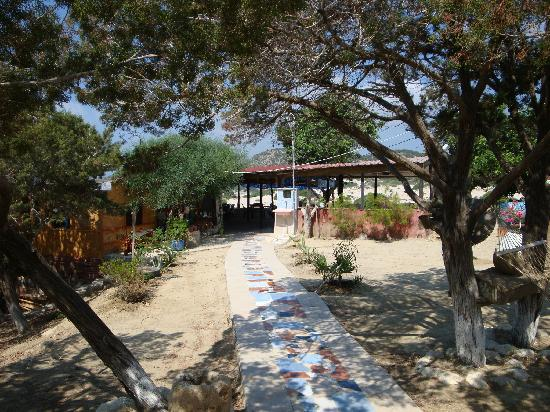 Bed and breakfasts in Dipkarpaz