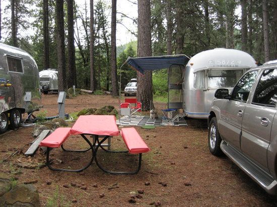 Fridays RV Retreat & McCloud Fly Fishing Ranch: Camping in the trees