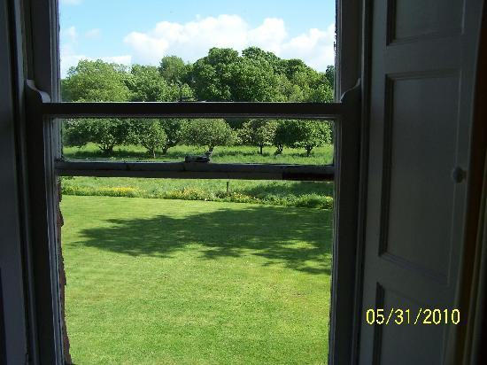 View from our window to Bayly Farm pastures
