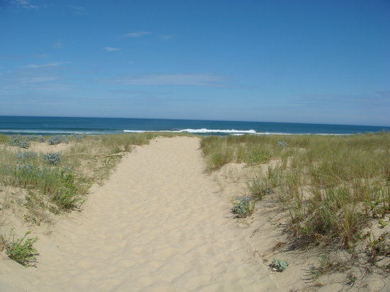 Landes, Frankrig: Plage de Contis