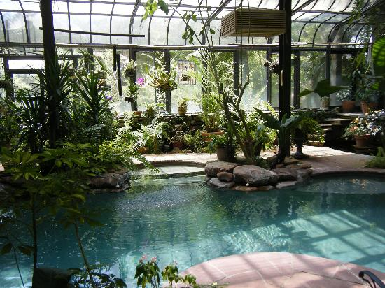 Indoor Greenhouse Pool Picture Of Cat Spring Texas Tripadvisor