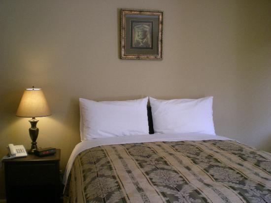 Squamish Budget Inn: Standard Queen Room